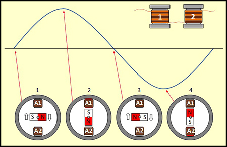 AC_2-pol[1].jpg