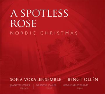 A-Spotless-Rose_3601.jpg.aebb480dc03fc04910bc5f016a4c9a09.jpg