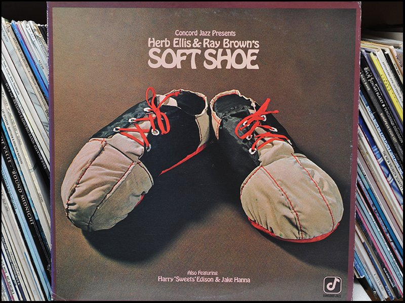 Soft Shoe cover.jpg