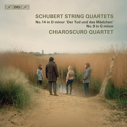 Schubert String Quartet.jpg